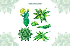 Watercolor succulents set Product Image 2