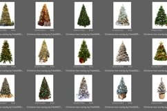 20 Christmas Tree Overlays Product Image 3
