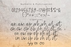 Enjoy cat font script Product Image 4