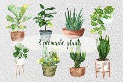 Watercolor Indoor Plants Clip Art Set Product Image 4