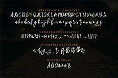 Web Font Leighton - Bold & Beauty Script Font Product Image 3
