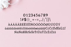 Aderes Serif Font Family Product Image 4