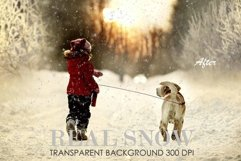Snow overlay, snow overlay for photoshop Product Image 3