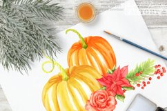 thanksgiving pumkins Watercolor clipart Product Image 5
