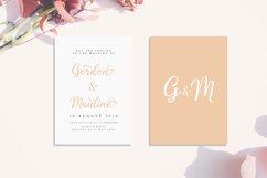 Shalinta - Luxury Calligraphy Font Product Image 4