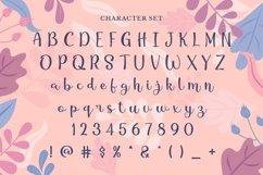 Web Font Seichen Product Image 2