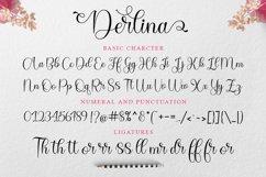 Derlina Script Product Image 8
