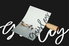 Web Font Waylon - Beauty Script Font Product Image 2