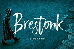 Brestonk Product Image 1