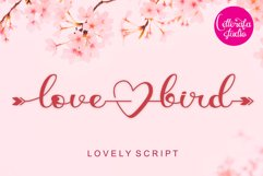 Lovely Spring Bundle - 21 fonts in 1 Product Image 12