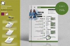 Profesional Resume Product Image 5
