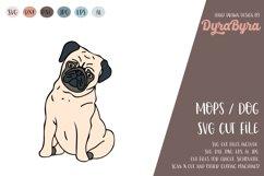 PUG Dog SVG / Mops SVG / Dogs love SVG Vector File Product Image 1