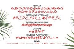 Elliot Brush Font Product Image 3