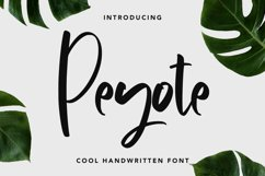 Peyote - Cool Handwritten Font Product Image 1
