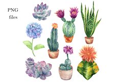 Watercolor Cactus and Flowers Clipart. Product Image 3