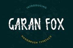 Garan Fox Product Image 1