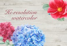 Watercolor Peonies and Hydrangea Frames Product Image 5
