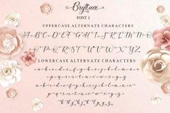 Bryttani Font Trio Product Image 8