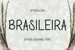 Web Font Brasileira Font Product Image 1