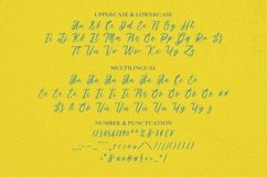 Web Font Springtown Font Product Image 4