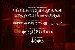 Web Font Daniyel - Stylish Brush Font Product Image 2
