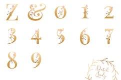 Floral Alphabet & Number Clipart Set #1 Product Image 2