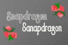 Snapdragon Product Image 2
