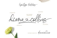 Stephen & Gillion - Signature Script Product Image 2
