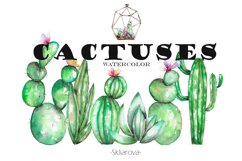 Watercolor Cactuses clipart Product Image 1