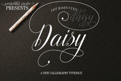 Daisy Script Product Image 1