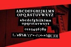 Web Font Aconitum Product Image 4