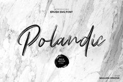 Polandic SVG Brush Font Product Image 1