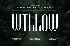 Web Font Willow Product Image 1