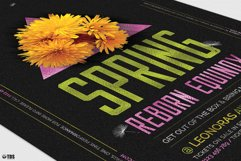 Spring Equinox Flyer Template V6 Product Image 6