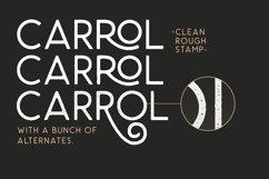 Carrol Wild - Modern Sans Product Image 3