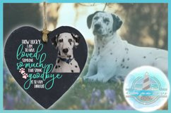 Pet Memorial Quote How Lucky I Am | Pet Loss Sympathy Gift Product Image 3