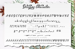 Dilovany Script Product Image 9