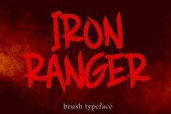 Brush Font Bundle - 45 Fonts Product Image 6