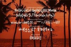 Web Font Callisto - A New Brush Font Product Image 6