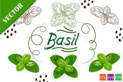 Basil SVG Product Image 1