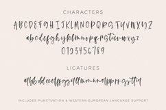 Rosecity Script Product Image 4