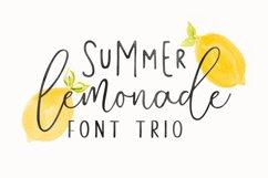 Summer Lemonade Extras Product Image 1
