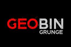 GEO BIN Grunge Product Image 1