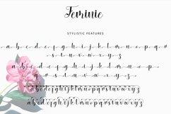 Feminie Italic Script Product Image 4