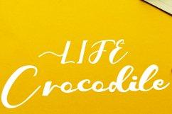 Crocodile Product Image 1