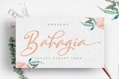 Lovely Font Bundles 90 Off Limited Time Product Image 4