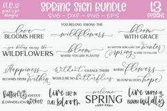 Spring Sign Bundle - 13 Spring SVG Cut Files Product Image 1