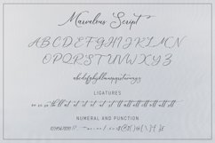 The Marvelous Font Duo Product Image 12