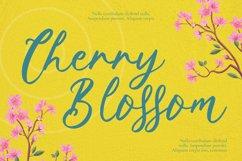 Springtown Font Product Image 4