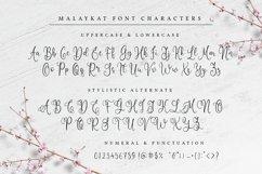 Malaykat Script Font Product Image 4